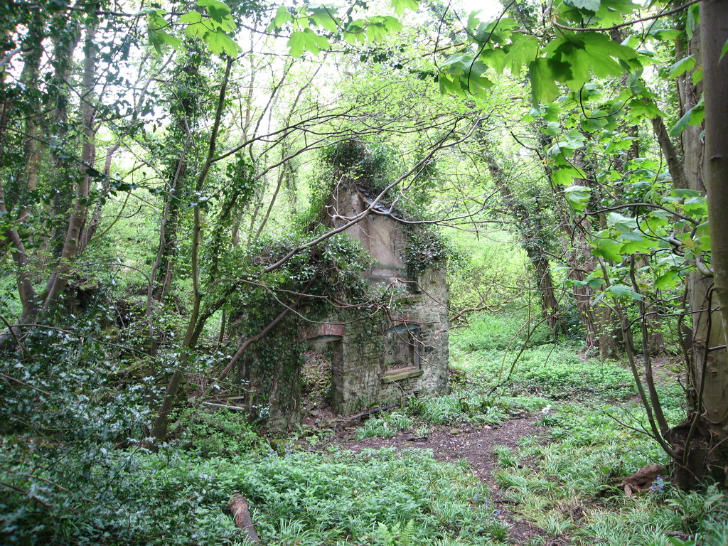 Image showing a derelict building in woodland