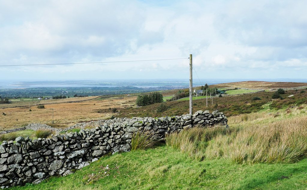 Image showing rough land on a smallholding in Wales
