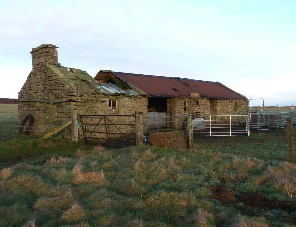 Image showing a smallholding with a derelict building