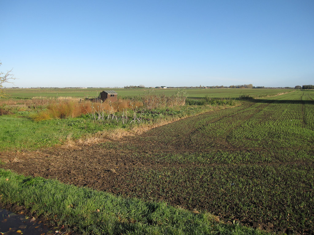 Smallholdings for sale