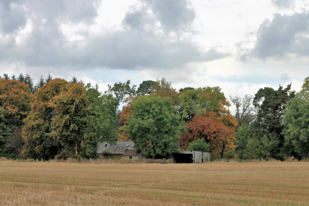 Smallholding for sale with a derelict building