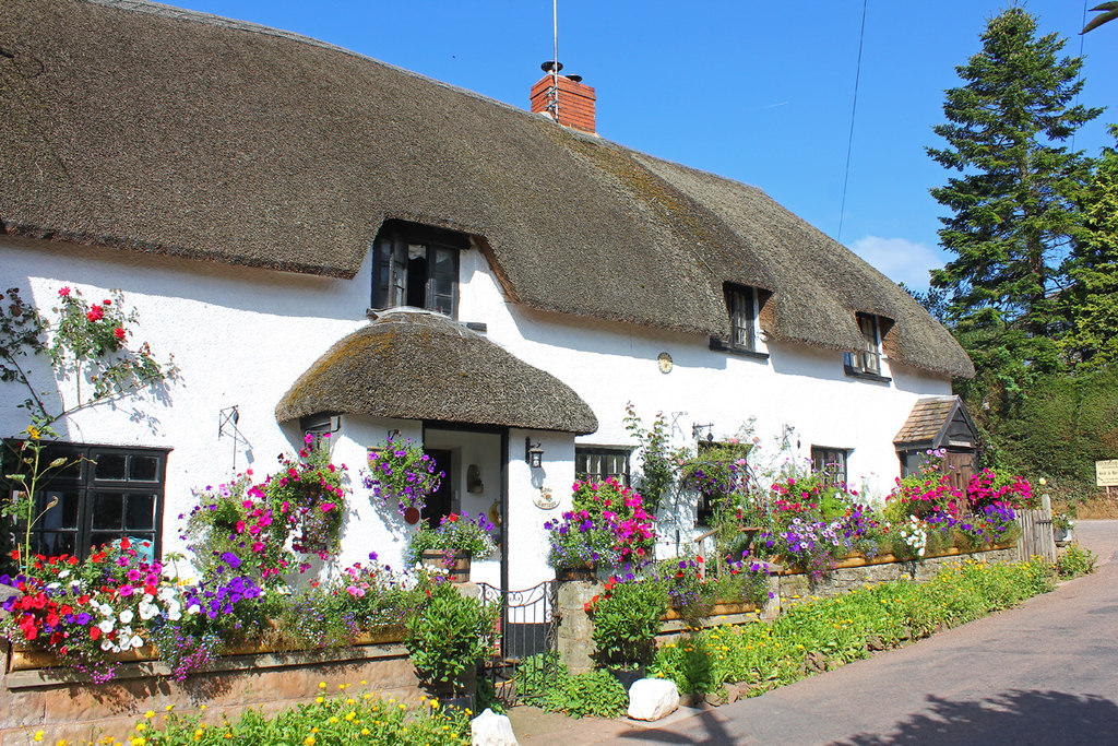Image showing a thatched rural cottage in devon