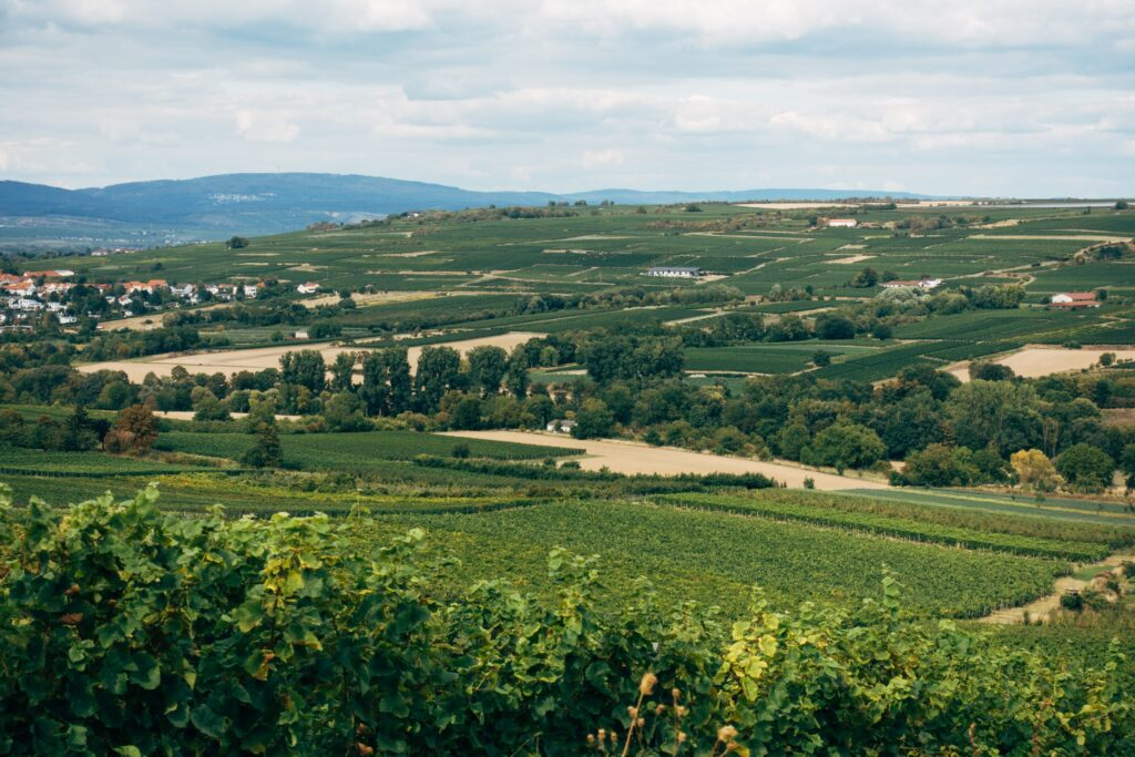 Permitted Development On Agricultural Land